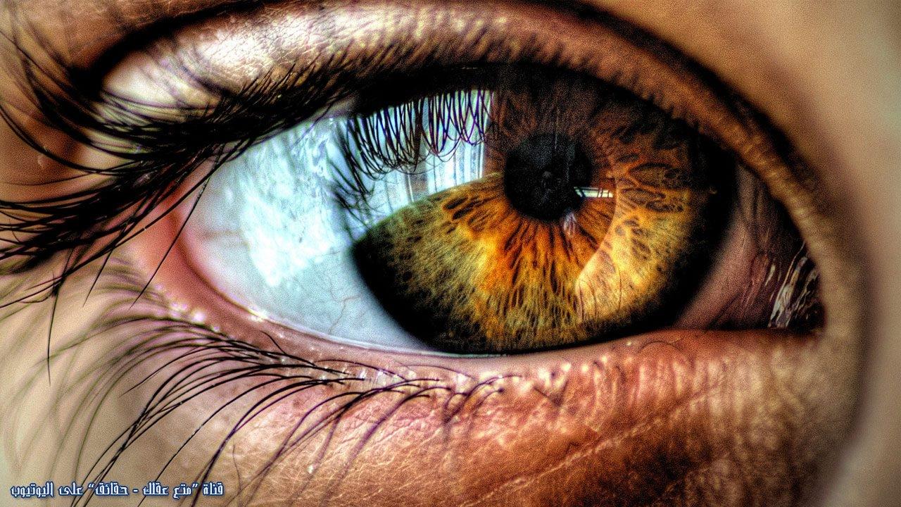 50_حقيقة مذهلة عن العين ستصيبك بذهول تام سبحان الله