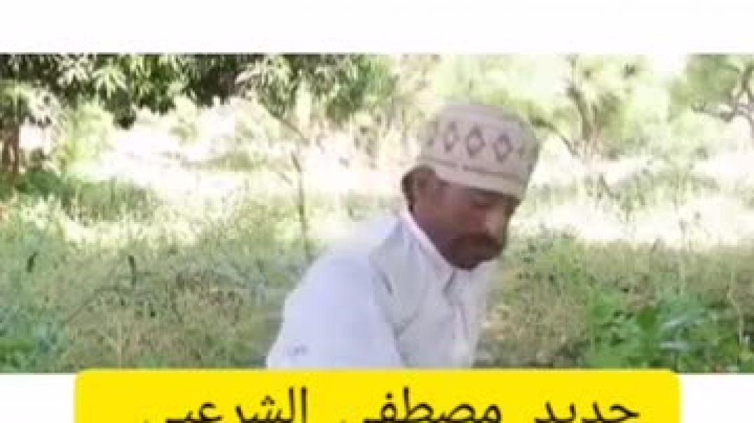 مصطفى الشرعبي_الشحطة بألفين ريال هههههههههه