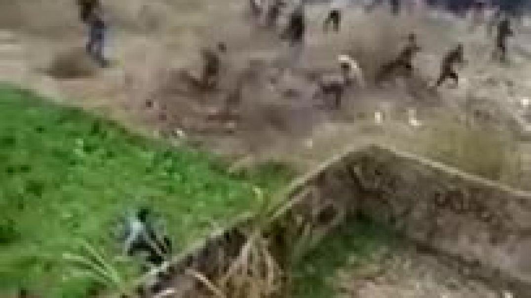 الفهد تهاجم الناس في الهند