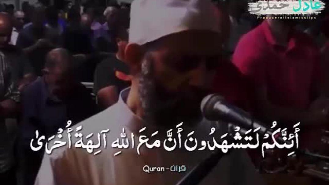 قران كريم  بصوت الشيخ عادل حمدي